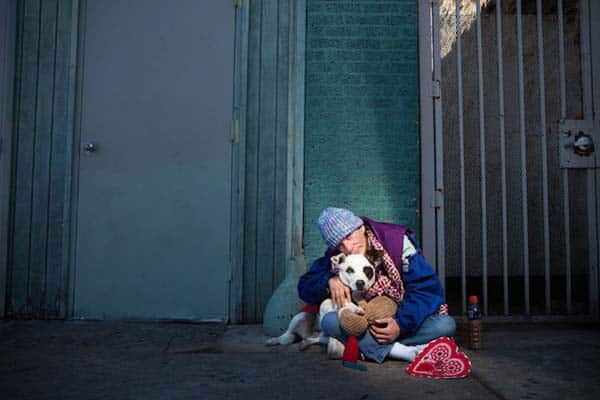 homeless-and-dogs