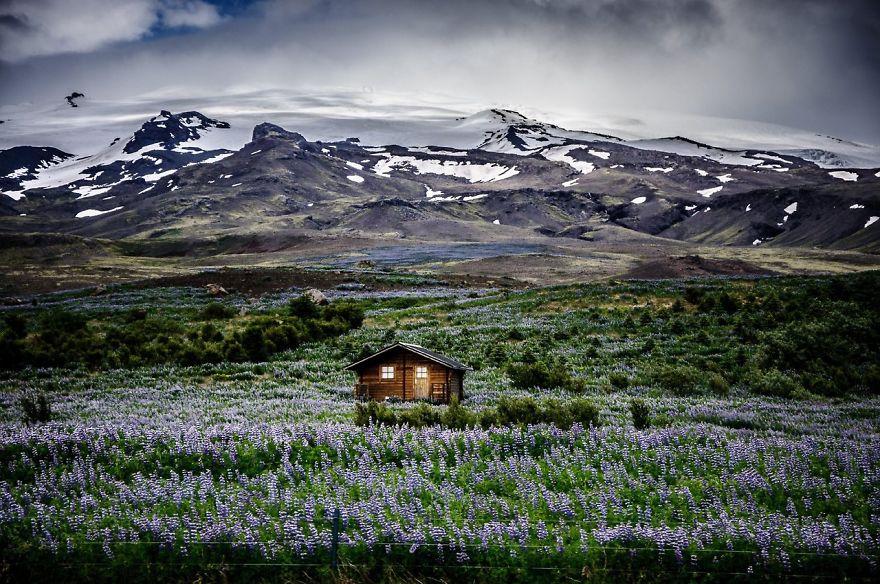 Icelandic Mountain Meadow Retreat