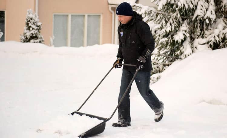 presidente de finlandia