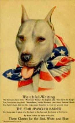 Cartel de la Primera Guerra Mundial con un Pit Bull como la representación patriótica de los Estados Unidos.